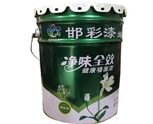 净味全效健康墙面漆